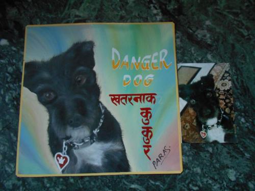 Folk art Terrier hand painted on metal