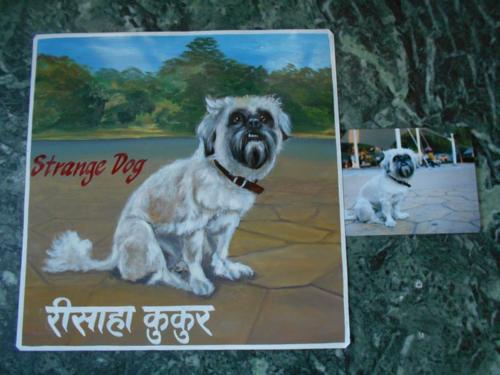 Folk art Beware of Dog hand painted in Nepal
