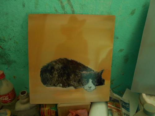 Folk art beware of Cat sign in Kathmandu
