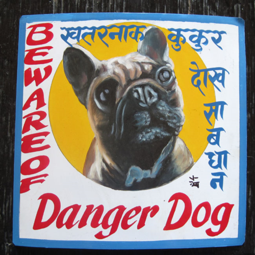 Folk art French Bulldog hand painted on metal with a dramatic circle motif in the classic Nepali signboard style in Kathmandu