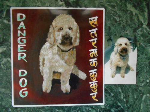 Folk art Labradoodle hand painted on metal