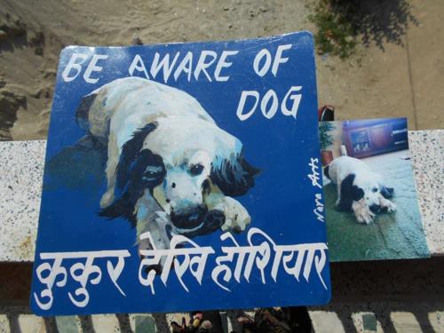 Folk art Border Collie hand painted on metal in Nepal