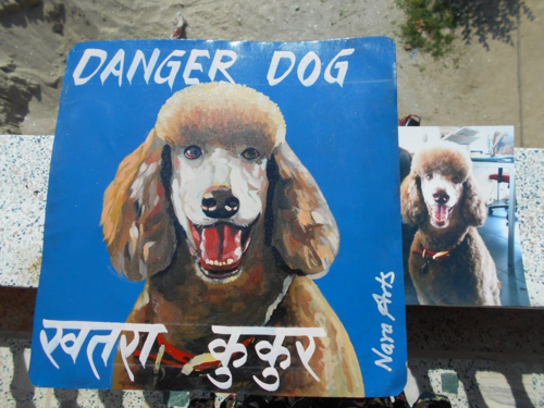 Folk art Standard Poodle hand painted on metal in Nepal