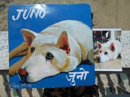 Folk art portrait of a big white dog hand painted on metal by a sign painter in Nepal