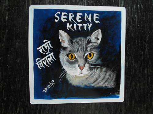 Folk art Beware of Cat hand painted on metal by a signboard artist in Kathmandu Nepal