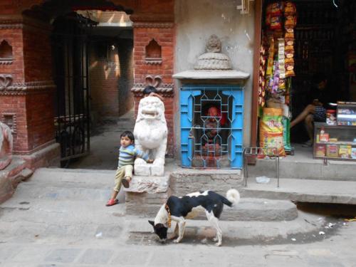Kukur Puja in kathmandu