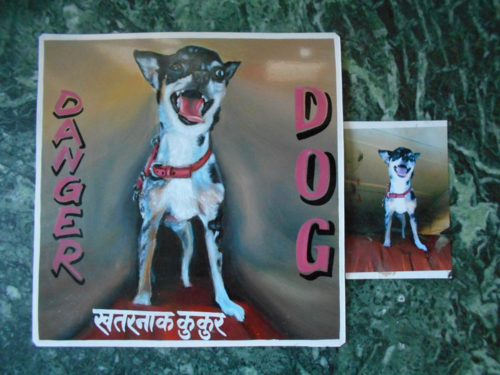 Folk art Beware of Chihuahua sign hand painted on metal in Nepal