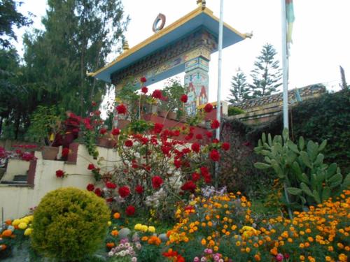 Gardens of the Schechen Monastery