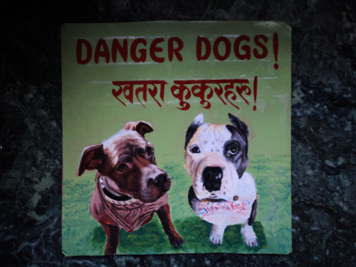 Folk art portrait of a pair of Pit Bull Terriers hand painted on metal in Nepal