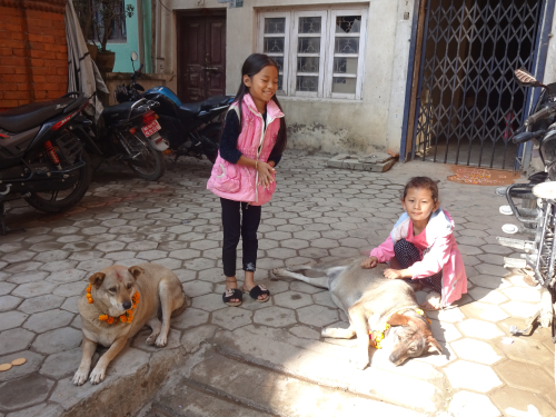 Nepali girls with their dogs on the Day of the Dog, Kukur Tihar