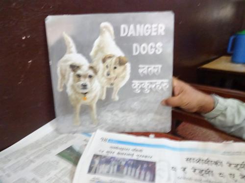 Folk art Jack Russell Terriers hand painted on metal by a signboard artist from Kathmandu, Nepal