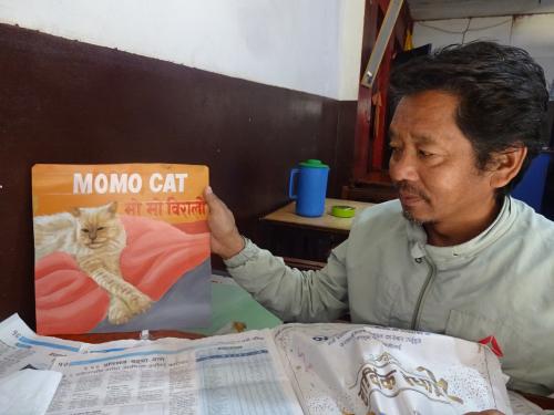 Folk art portrait of a Himalayan Cat hand painted on metal by an artist in Kathmandu, Nepal