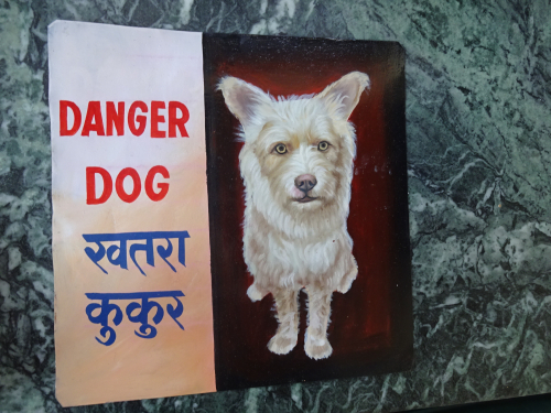 Folk art Shaggy dog portrait hand painted on metal in Nepal