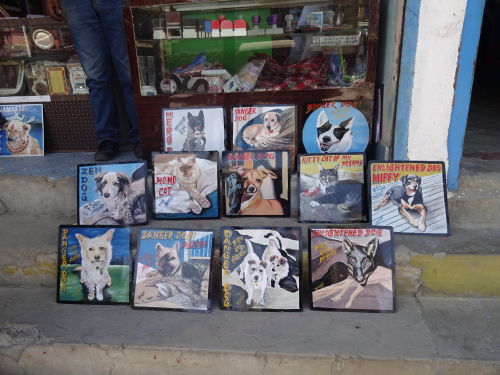 Folk art custom pet art hand painted on metal drying on the streets of Kathmandu