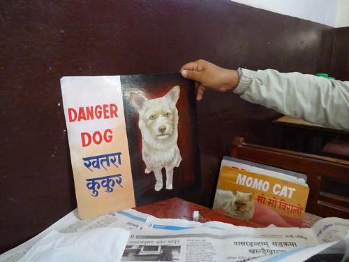 Folk art portrait of a shaggy dog hand painted on metal by a signboard artist in Kathmandu, Nepal